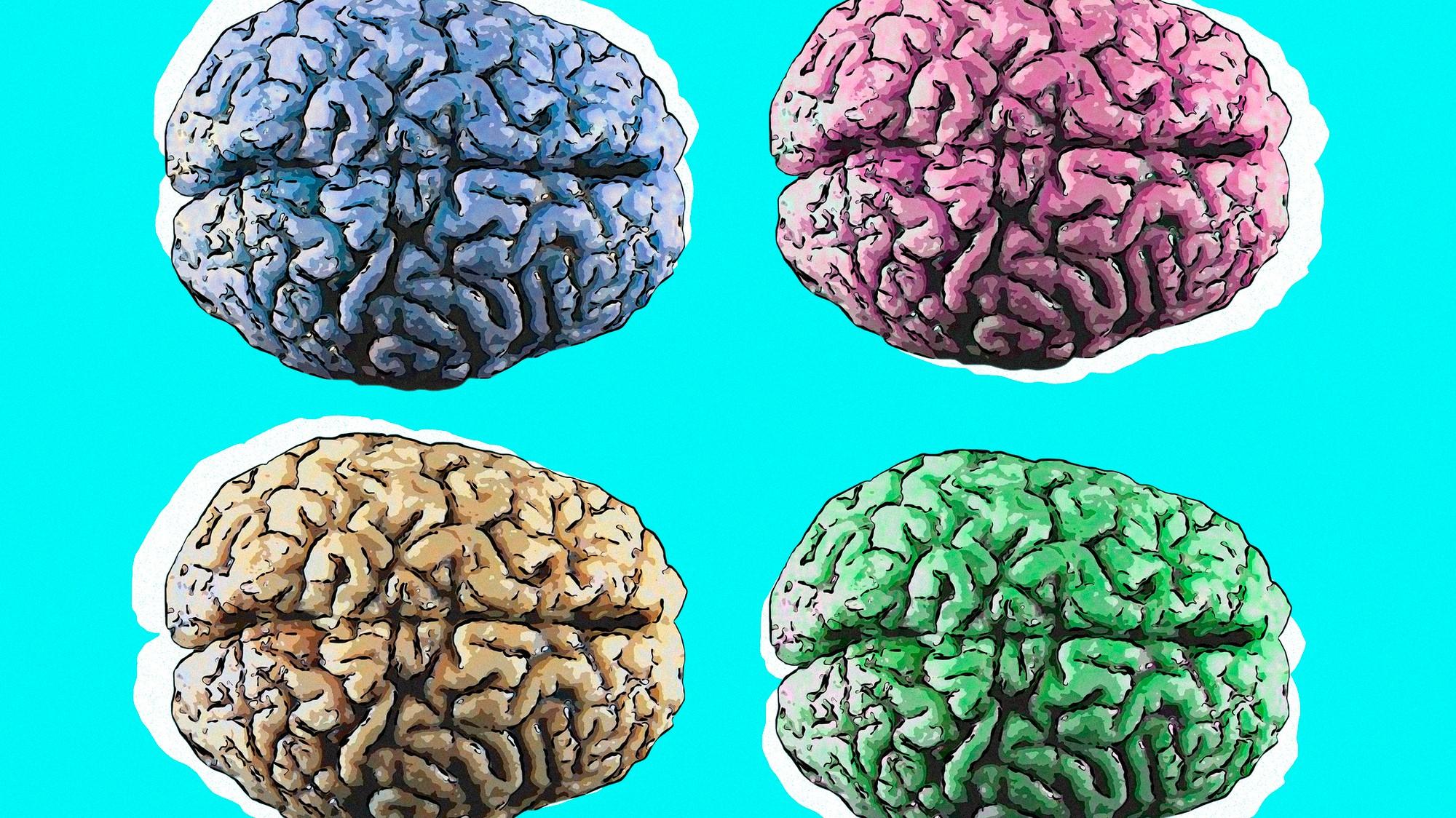 мастеру проверка мозга с картинками всего, вам