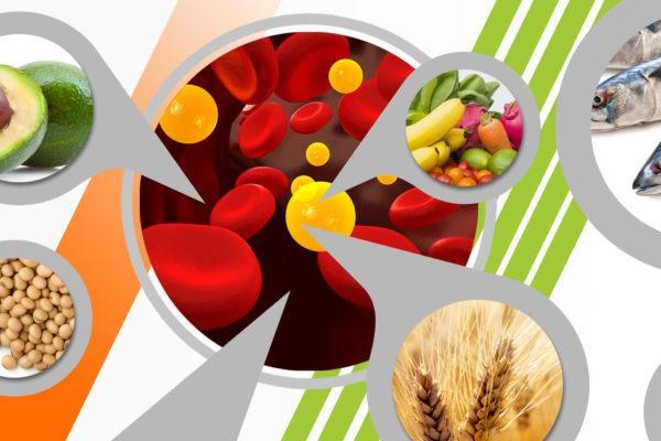 6 факторов повышенного холестерина