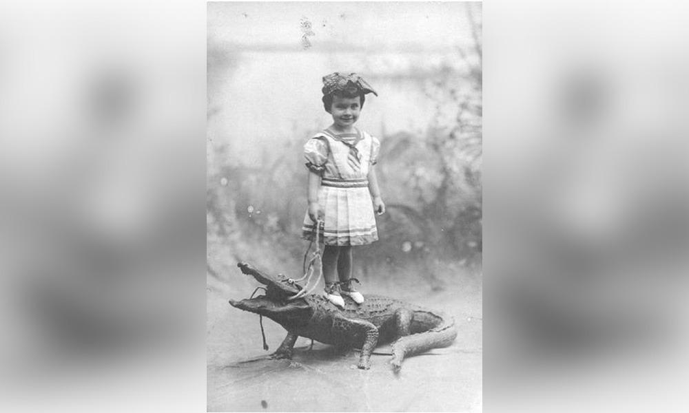девочка с крокодилом