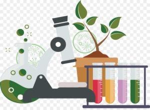 Школьный тест по биологии